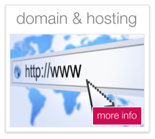 domains and hosting plymouth